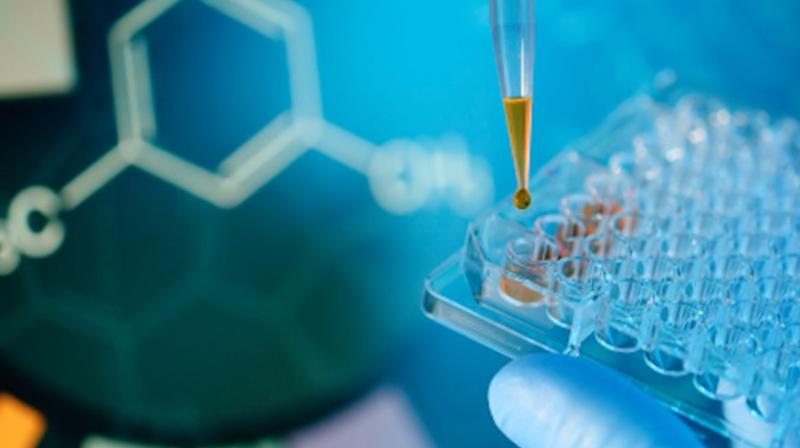 هندسة كيمياء الأدوية